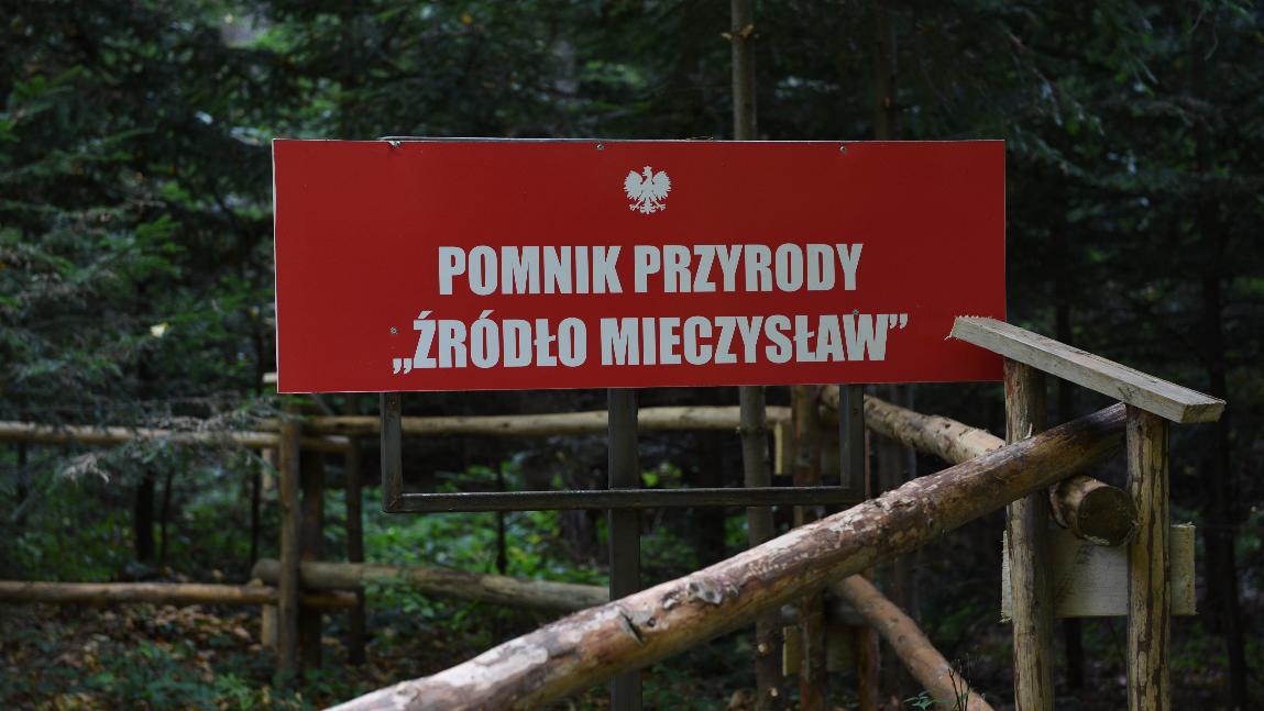 """Pomnik przyrody """"Źródło Mieczysław"""""""
