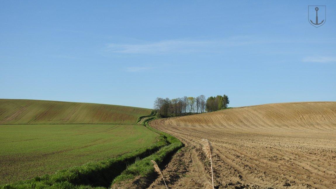 Agencja Restrukturyzacji i Modernizacji Rolnictwa udziela pomocy rolnikom