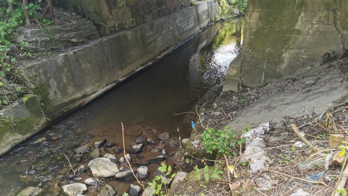 Zanieczyszczone brzegi potoku Śmierdziączka w Korczynie